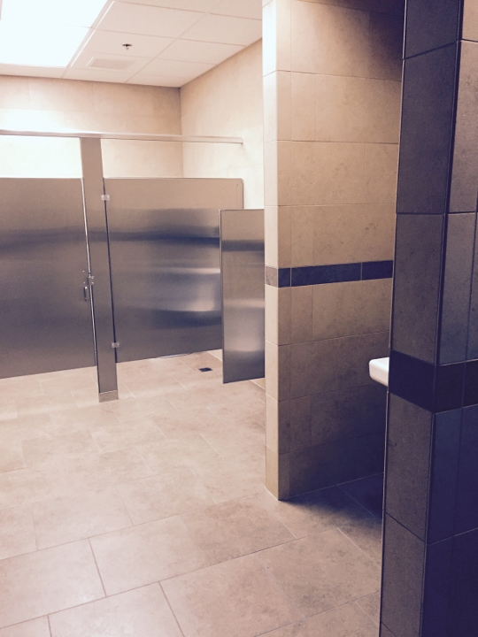 This picture shows a tile installation at a pharmaceutical facility.
